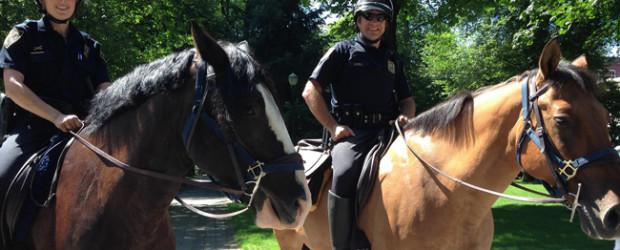 police horse Murphy